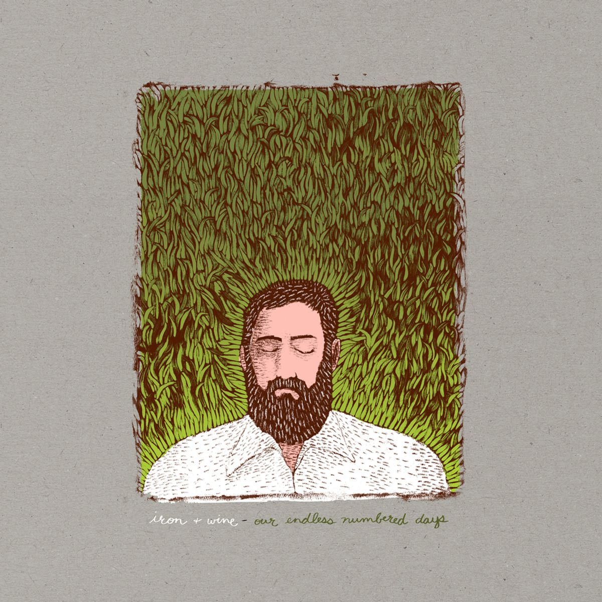 Iron & Wine - 'Our Endless Numbered Days'