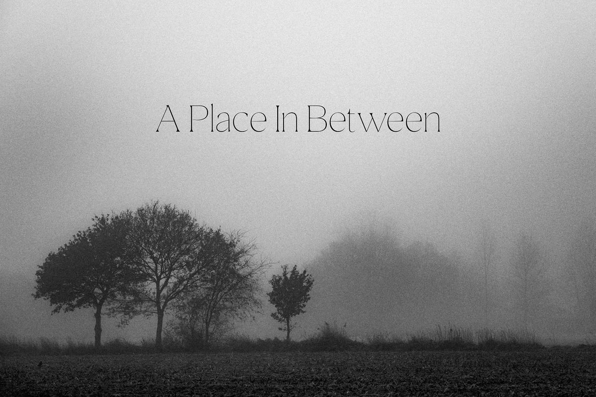 A Place In Between - Syn