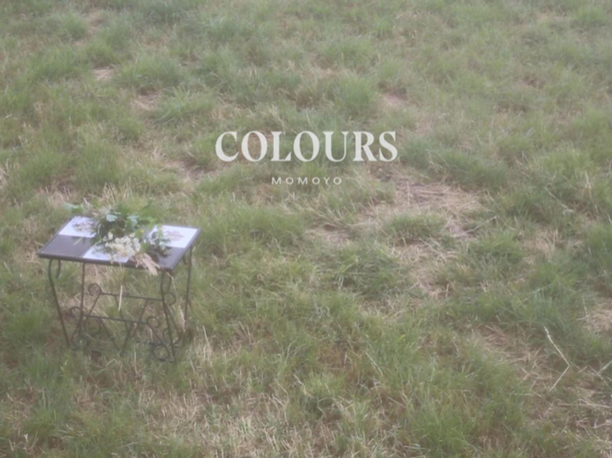 momoyo - Colours