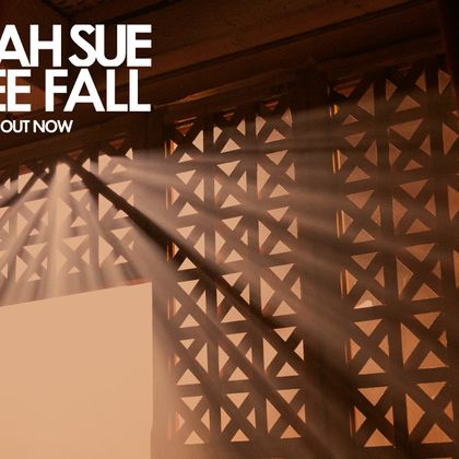 Selah Sue - Free Fall