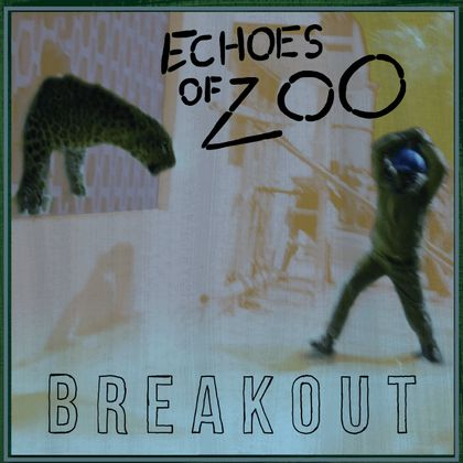 Echoes Of Zoo - Dance Around Bullets